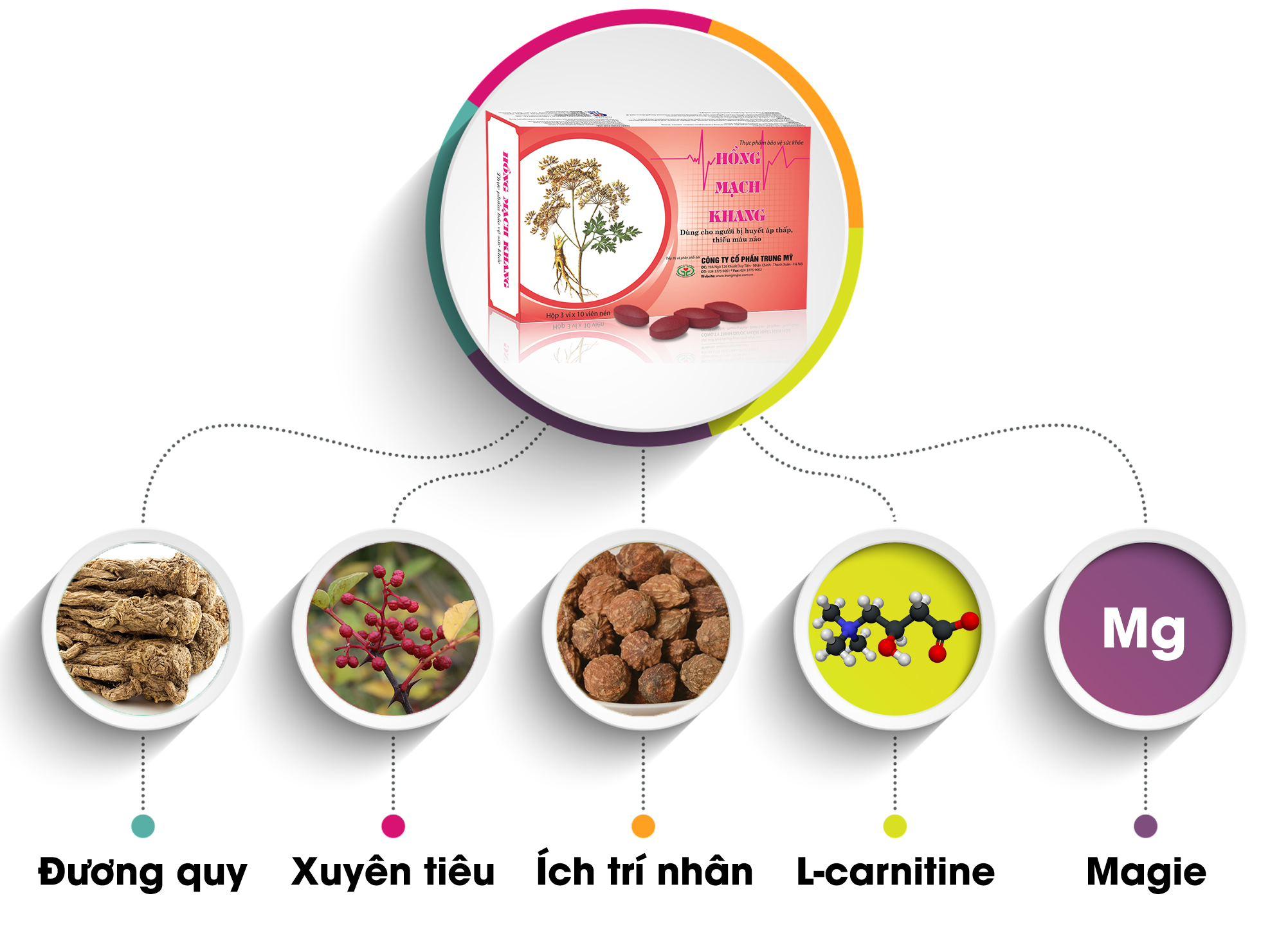 Hồng Mạch Khang tác dụng toàn diện với bệnh huyết áp thấp
